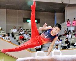 体操男子個人総合で2位に入った谷田雅治のあん馬=北九州市立体育館