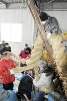 力いっぱい3本の縄を編み上げ大縄を作った参加者=14日、福井県敦賀市相生町