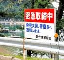 摘発密漁者8割県外、愛知県が突出