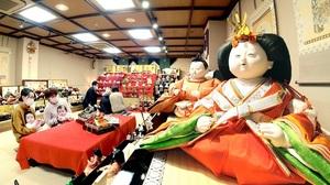 あでやかなひな人形が並び、家族連れでにぎわう売り場=1月21日、福井県福井市順化2丁目のアラヨ人形