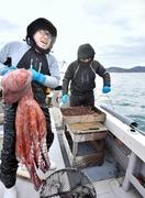ミズダコ伝統漁、20キロ「重たっ」