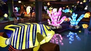 光り輝く魚たちが泳ぎまわり幻想的な空間に包まれた会場=29日、福井県坂井市の芝政ワールド