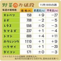 野菜のお値段 11月18日の週