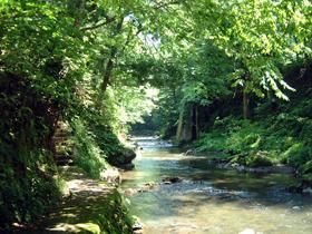 清流・足羽川のほとりを散策できる歩道