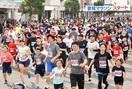 敦賀マラソン2019、秋晴れ快走
