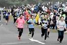 たすきつなぎ絆強く リレーマラソンに6041人…