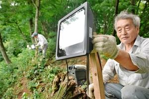 山頂付近の斜面にLED照明を取り付ける花谷城山会メンバー=12日、福井県永平寺町の城山