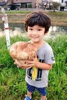 道端の草地に生えてきた巨大キノコを持つ結人君=福井県越前市