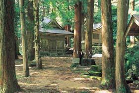 山のふもとの観音様。勇壮な大杉は市の天然記念物