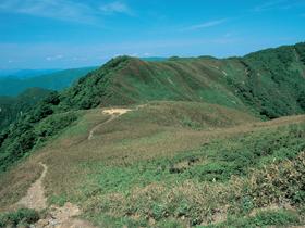 紅葉のメッカ 山頂のお花畑も大人気