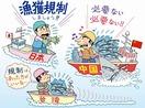 【サンマ漁獲数量規制】国別枠導入、再び物別れ …