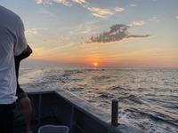 憧れの「食材の現地調達」キャンプに挑戦! 結果は大漁!もう食べられなイカ…【ふくいのそと遊び】