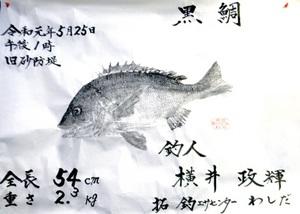横井さん(坂井市)のチヌ魚拓