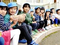ほくほくの芋 おいしい 越前町 園児ら収穫に感謝