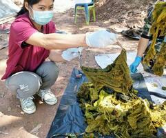 野生のシカの胃から見つかったごみ=25日、タイ北部ナーン県(タイ国立公園・野生動物・植物保全局提供、共同)