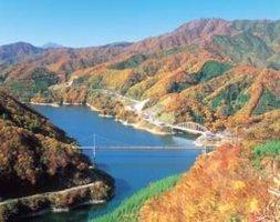 九頭竜湖は「夢のかけはし」からの眺めが 最高!