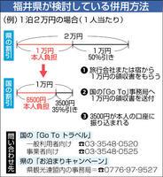 福井県が検討している併用方法