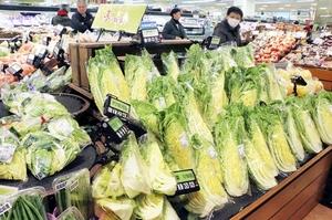 葉物野菜を中心に高値が続き、スーパーでは小分けしたものを増やすなど工夫している=23日、福井市のショッピングセンターベル内のアル・プラザベル