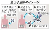 政府、遺伝子治療の実用化推進