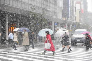 冬型の気圧配置が強まった昨年12月6日の福井市内。 (福井新聞紙面より)