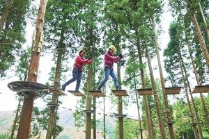 樹上のコースなどでさまざまな体験ができる木育拠点施設=福井県池田町志津原