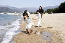 暑い!敦賀、小浜で最も早い夏日
