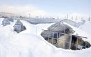 2月の大雪被害20億9000万円