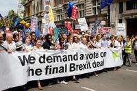 国民投票の再実施要求