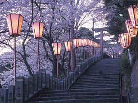 新田義貞と足利軍が戦った古戦場。恋の宮、桜の名所として有名
