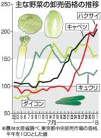 主な野菜の卸売価格の推移