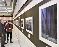 【作品展】鯖江市の写真愛好会「フォト悠遊」展示会