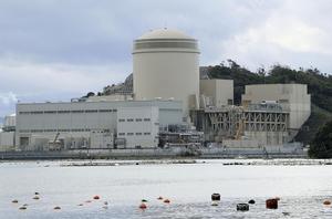 関西電力美浜原発3号機=2020年11月、福井県美浜町