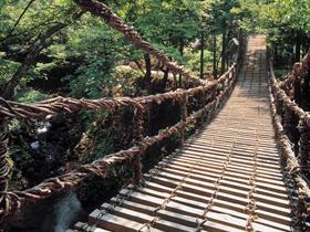 渓流を真下に見下ろせる高さ12mのつり橋