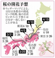全国の桜開花予想