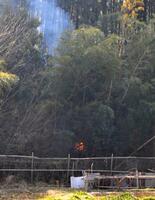栃木県足利市の山火事で、住宅近くにまで迫る火の手=25日午前10時3分