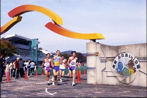 大野市最大の都市公園。スポーツ施設が充実