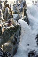 古座川支流小川のアユの「トントン釣り」=16日午前、和歌山県古座川町