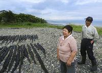 夫婦で昆布を採り、干す 北海道縦断祝い乾杯 八雲―函館 石川文洋80歳・列島縦断あるき旅(8)