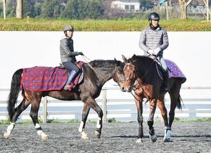 馬術総合優勝に向け、練習する吉村英喜(右)と政兼実佳=昨年11月28日、福井市の福井ホースパーク
