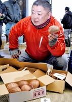 初競りで高値で販売されたジャンボシイタケの「香福茸」=19日、福井県越前市の武生青果