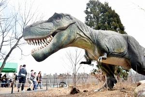 迫力満点の動く恐竜ロボットが並ぶ「かつやま恐竜ディノパーク」=1日、福井県勝山市村岡町寺尾