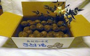 福井県勝山市のふるさと納税返礼品に追加された地元産の減農薬里芋