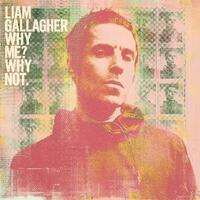 リアム・ギャラガー『ホワイ・ミー?ホワイ・ノット』 繊細とまで言えるロックに対する愛情表現