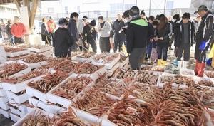 大雪の影響が続く中、越前漁港で行われた20日の競り。解禁したばかりのミズガニも並んだ=福井県越前町(同町観光連盟提供)