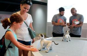 ソニーの家庭用犬型ロボット「aibo」を見る人たち=8月、ニューヨーク(共同)