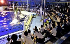 貸し切りでイルカショーを楽しむ上中中学校の生徒たち=9月16日夜、福井県坂井市の越前松島水族館