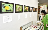「万葉植物」と歌 紹介 万葉館(越前市)で特別展