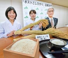 コシヒカリの後継と位置付ける新品種に選定された「越南291号」=2日午後、福井県庁