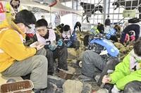 化石採れた友達できた 有終西小、四ケ浦小(越前町)が交流 大野 みんなで読もう