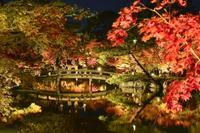 紅葉の見頃、北日本や関東遅め